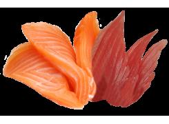 J21  saumon-thon